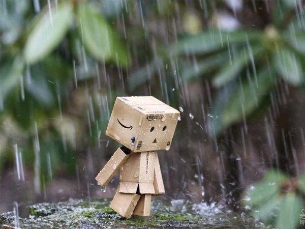 Mơ thấy mưa có ý nghĩa như thế nào?