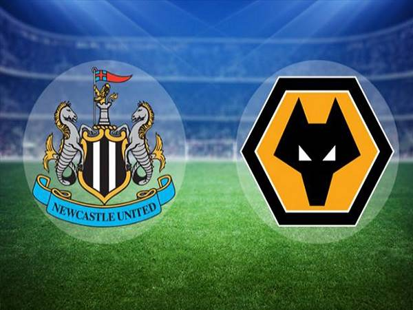Soi kèo Newcastle vs Wolves – 03h00 28/02, Ngoại hạng Anh